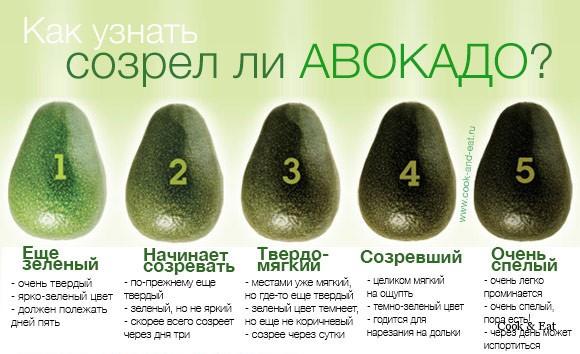 Определяем зрелость авокадо